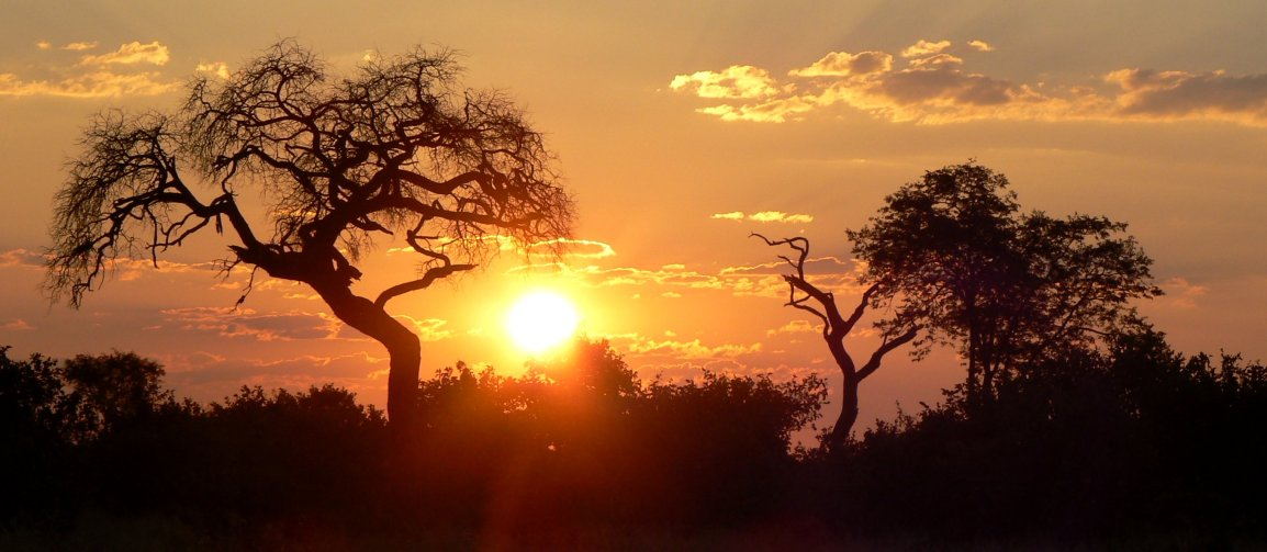 Savute sunset, Botswana 2007 - photo by E. Jurus