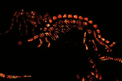 Fantastic  stalking pumpkin dinosaurs at the Great Jack-o-Lantern Blaze, Croton-on-Hudson, NY - photo by E Jurus