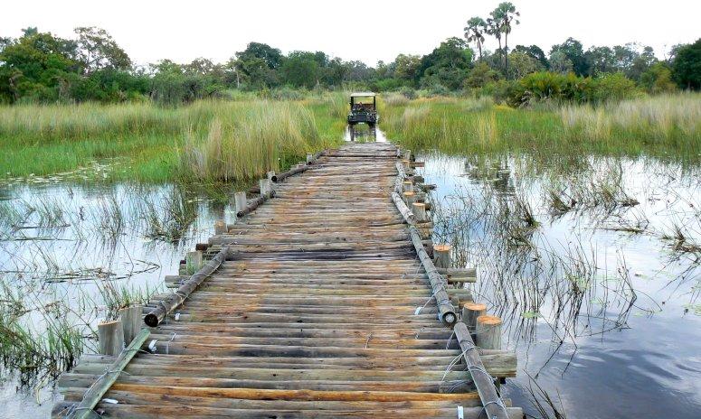 Log bridge in the Okavango Delta - photo by E Jurus