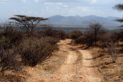 Road in Samburu - photo by E Jurus