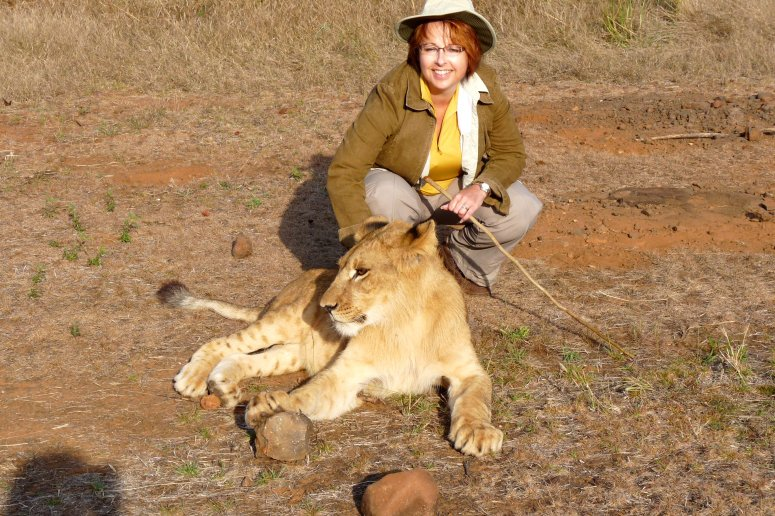 Yours truly with a young lion on the Lion Encounter, Masuwe Reserve, Zimbabwe